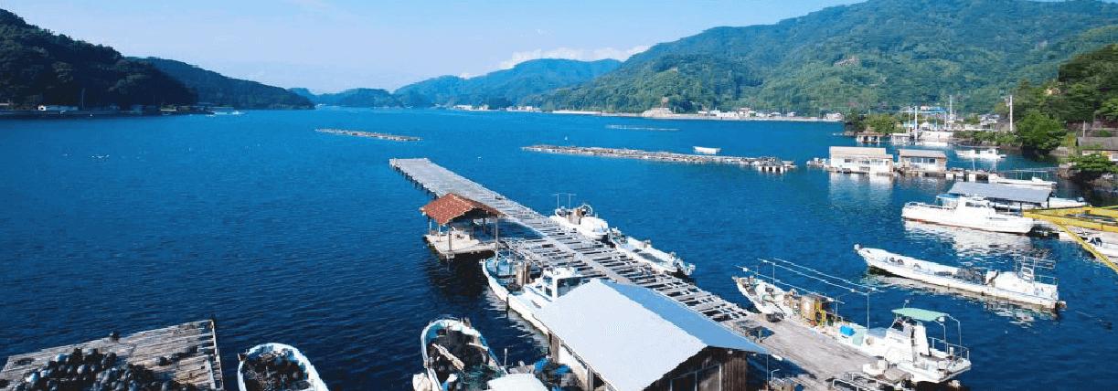 筏と海の風景写真